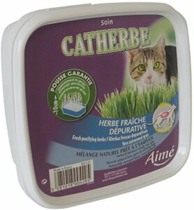 AIME Herbe à Chat CATHERBE, Meilleure Confort Disgestif lot de 7