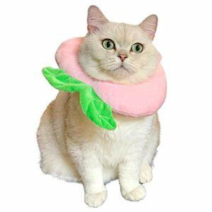 Amakunft Collier réglable pour chat, adorable cône de cou après une chirurgie, cône de protection pour la guérison des plaies, collier élisabéthane, bord doux pour chaton et chat (pêche)