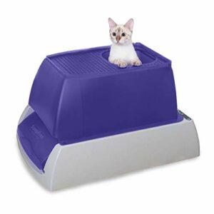 PetSafe ScoopFree Boîte à litière autonettoyante pour chat avec bac jetable, 2 options de couleur