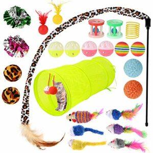 GOLDGE 25PCS Jouets Chat Kit, Jouet pour Chat Animaux Domestiques Toys pour Chat Chaton Minou, Jouet De Boule De Chat Tunnel Chat Jeu pour Chaton