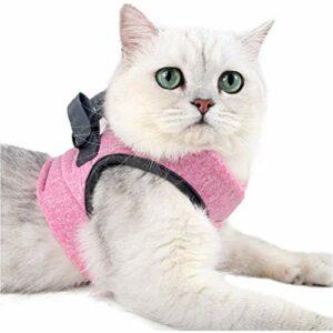 Bireegoo 1 ensemble de vestes pour chat avec corde de traction, harnais et laisse, collier à libération rapide, gilet de sécurité pour chaton et chats (rose, taille S)